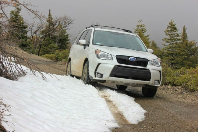 2014 Subaru Forester Stiff Ride